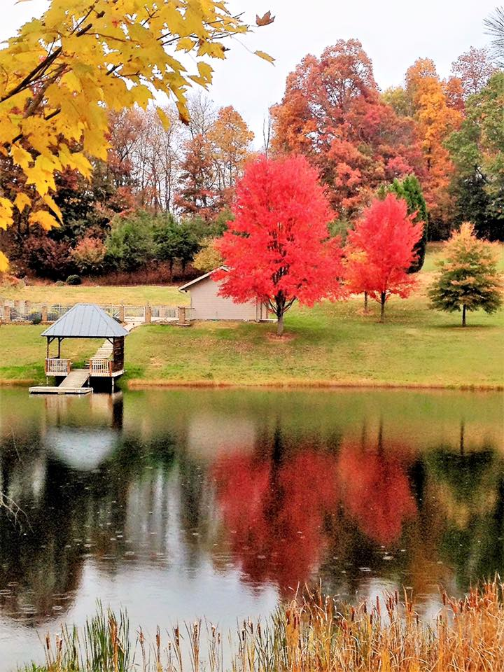 Destination-Weddings-Asheville-Reflections-at-the-Pond-3